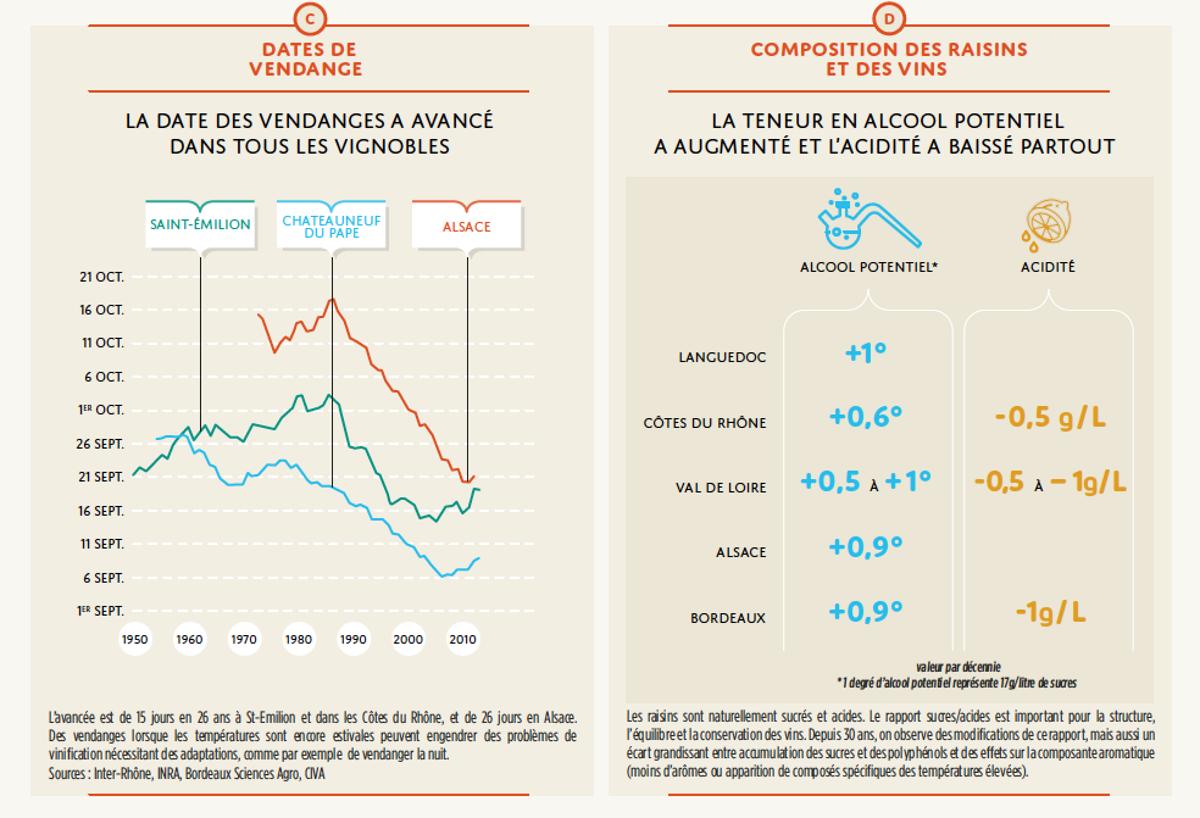 La vigne, le vin, et le changement climatique en France