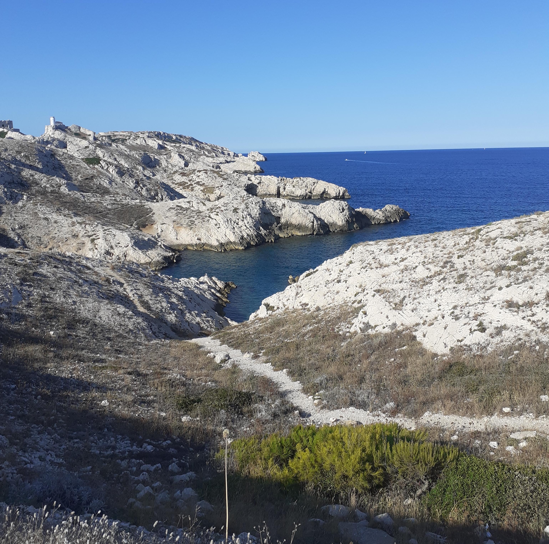 Journée thématique : la biodiversité littorale face au changement climatique